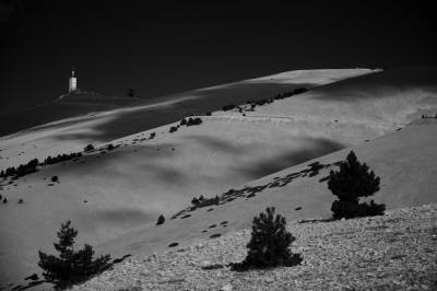 preview mont ventoux b and w