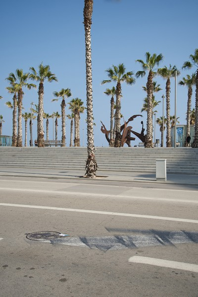 preview barceloneta trees verti