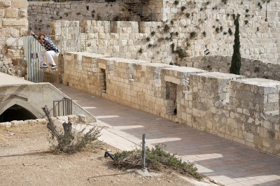 preview quentin boillon sw ollie jerusalem